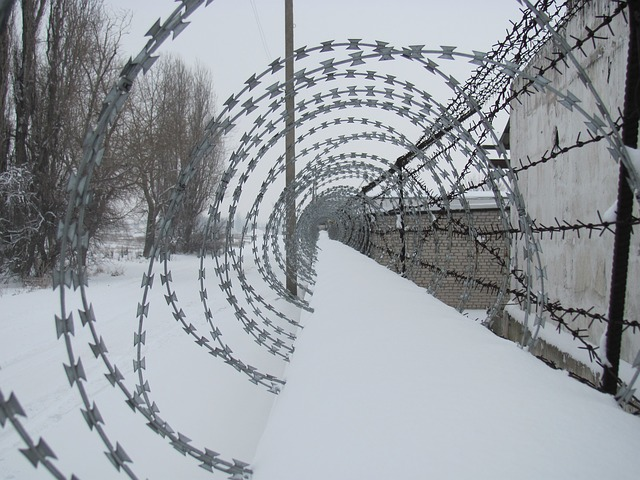 barbed-265674_640