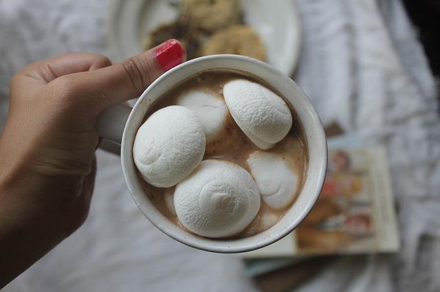 marshmallow-1036566_640