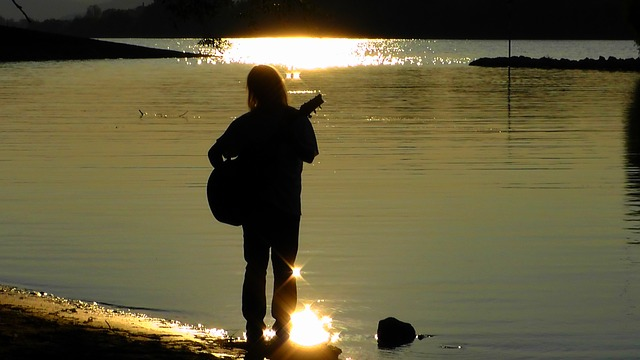 musician-77312_640
