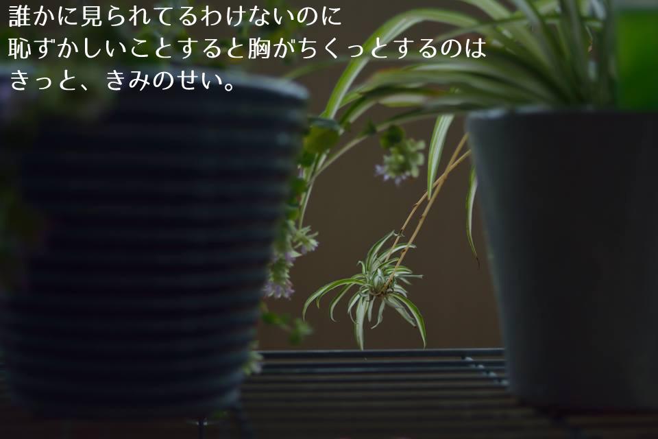 ちひろ (4)