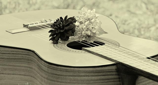 guitar-1585658_640